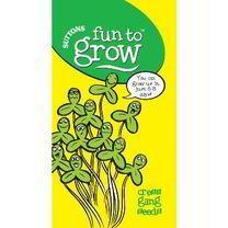 Fun to Grow Seeds: Cress Gang