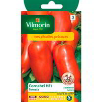 Tomato Seeds - Cornabel