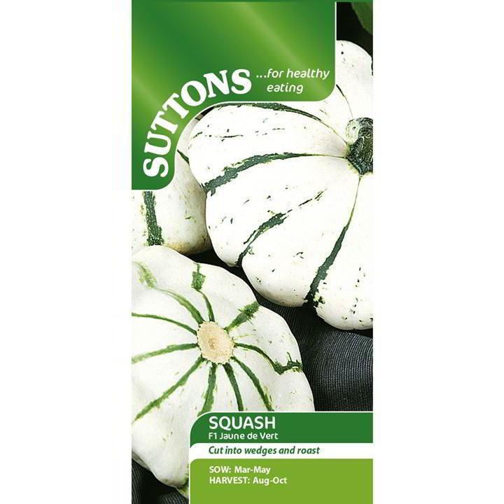 Squash Seeds - Jaune et Vert