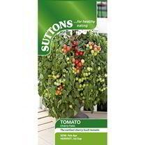 Tomato Seeds - Cherry Falls