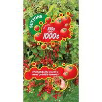Tomato Seeds - Hundreds and Thousands