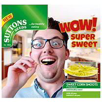 Sweet Corn Shoots Seeds - Bodacious