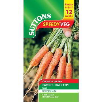 Speedy Veg Seeds - Carrot Ideal