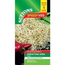 Speedy Veg Seed - Alfalfa