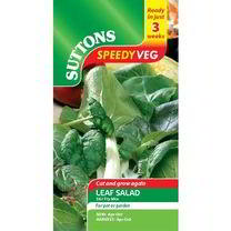 Speedy Veg Seed - Leaf Salad Stir Fry Mix