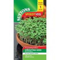 Speedy Veg Seed - Mustard