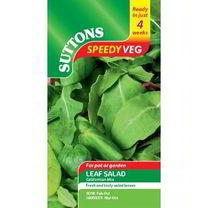 Speedy Veg Seed - Leaf Salad Californian Mix