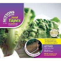 Lettuce Seed Tape - Little Gem Cos Lettuce