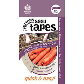 Seed Tape - Carrot Amsterdam Forcing 3