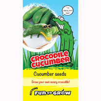 Cucumber Seeds - Crocodile Cucumber (Bush Champion)