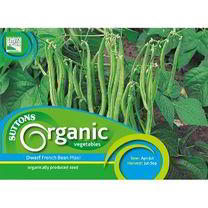 Bean (Dwarf French) Seeds - Maxi Organic