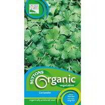 Herb Seeds - Coriander Organic