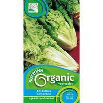 Lettuce Seeds - Cos Parris Island Organic