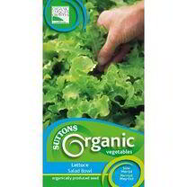 Lettuce Seeds - Salad Bowl Organic