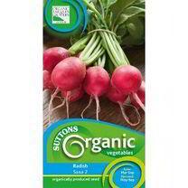 Radish Seeds - Saxa 2 Organic