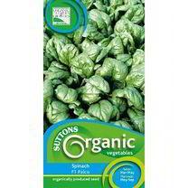 Spinach Seeds - F1 Palco Organic