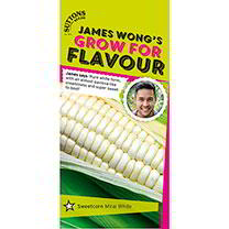 Part of the James Wong Grow For Flavour Range. James says Pure white form, with an almost pavlova-like creaminess and super sweet to bootHas the super