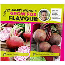 Beetroot Seeds - Twin Pack Chioggia/Detroit