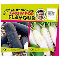 Part of the James Wong Grow For Flavour Range. James says Creamy Black Spanish goes up against the crisp freshness of White Icicle. White Icicle Class