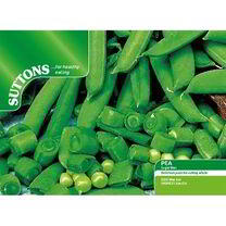 Pea Seeds - Sugarbon