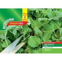 Speedy Veg Seed - Pea Shoots Twinkle