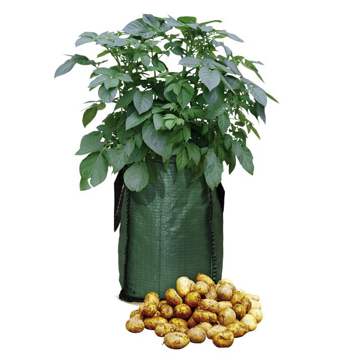Potato Growing Bag Kit (New)