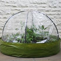 Small Dome Garden