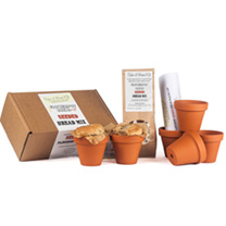 Flowerpot Kits - Bread Making & Chocolate Cupcake