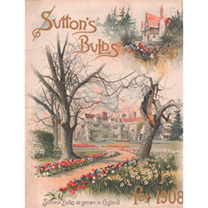 Jigsaw 1000 Pieces - Suttons English Bulbs 1908