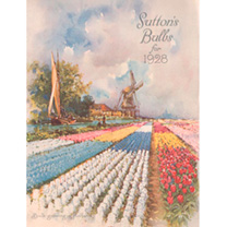 Jigsaw 1000 Pieces Tulip Fever 1928