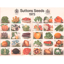 Jigsaw 1000 Pieces Heritage Seeds 1973