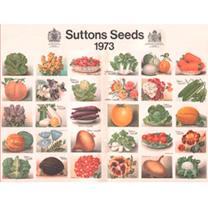 Jigsaw 1000 Pieces - Heritage Seeds 1973