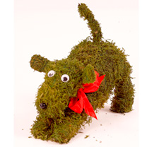 Moss Animal - Playing Dog