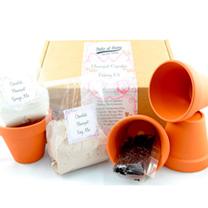 Flowerpot Kit - Chocolate Flowerpot Baking Kit