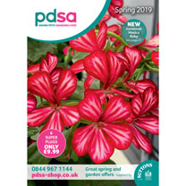 PDSA Catalogue