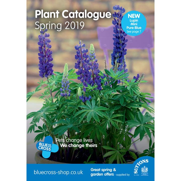 Blue Cross Catalogue