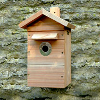 Premium Camera Nest Box Kit