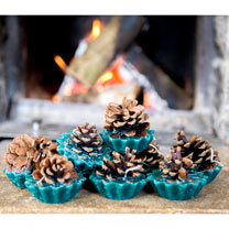 Pine Cone Firelighters
