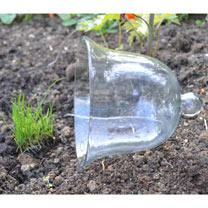 Bell Glass Cloche - Small