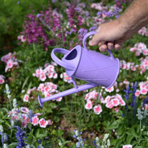 Seedling Watering Can - Lilac