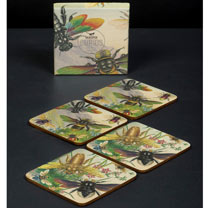 Flying Bugs Coasters