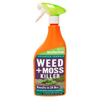 Weed & Moss Killer for Paths & Patios - Ready To Use