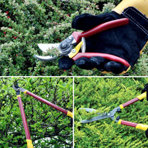 This essential garden cutting set includes Bypass Lopper, Shears and Secateurs all with high quality, non-stick precision steel blades. The ergonomic,