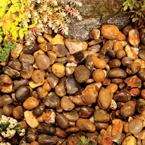 These River Pebbles will add some texture and interest to your garden. The mottled round and oval stones are ideal for paths and patios, alpines and r