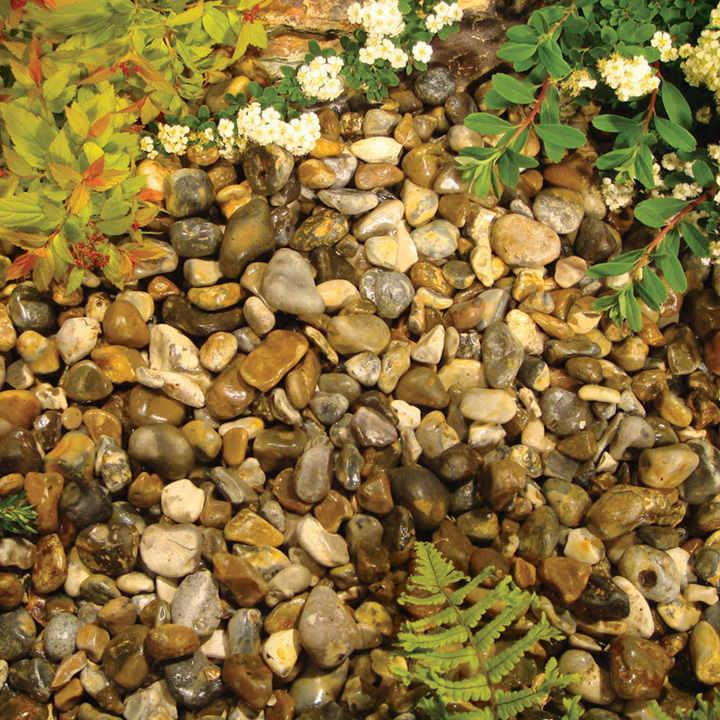 Oyster Pearl Pebbles - Bulk