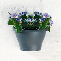 This handy wall decoration allows you to create your own wall design. The large 3 litre capacity ensure that plants are healthy and the overflow pipe