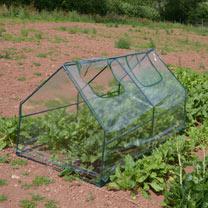 Small 'Greenhouse'