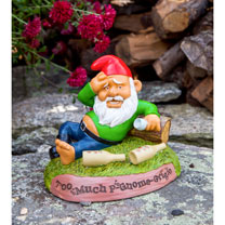 The Hungover Gnome