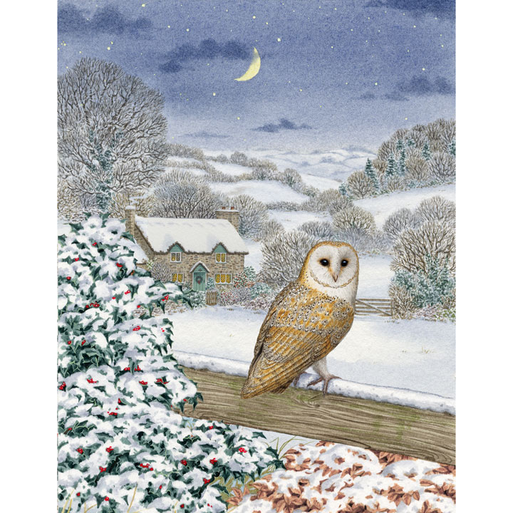 Christmas Owl - Christmas Cards - Greetings Cards - Charity Gifts ...