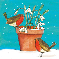 Robins and Snowdrops